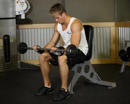 seated_palms-down_barbell_wrist_curl_2.jpg